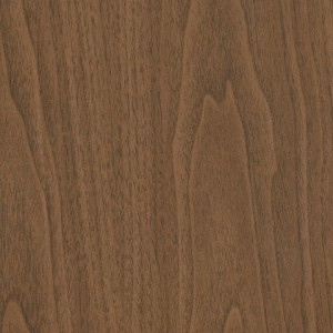 Bookmatch Walnut 422